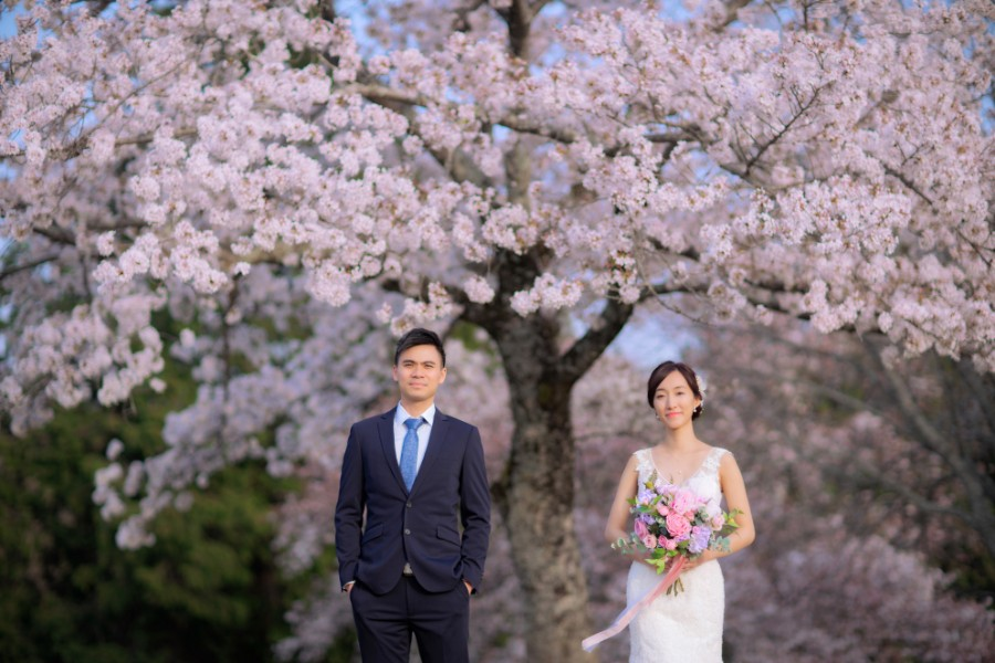 Japan Kyoto Pre-Wedding Photoshoot At Nara Deer Park During Spring With Cherry Blossoms  by Kinosaki  on OneThreeOneFour 20