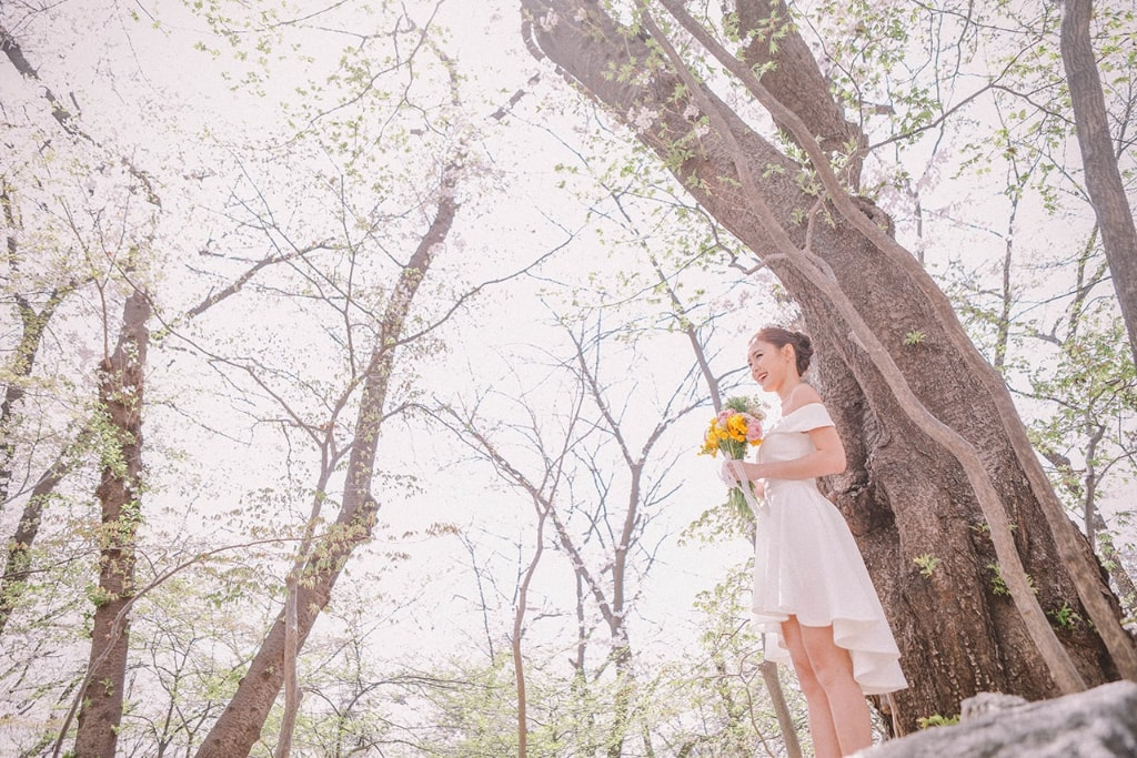 korea seoul forest pre wedding cherry blossoms